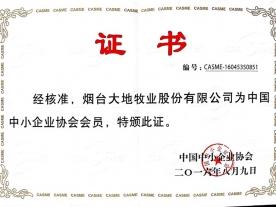 中国中小企业协会会员