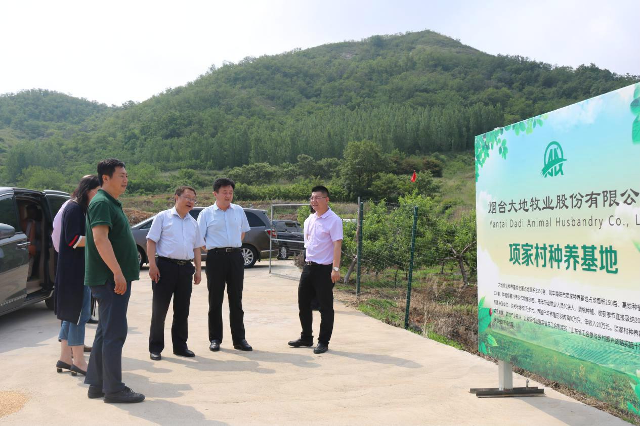 山东省总工会领导到行村镇工友创业园观摩
